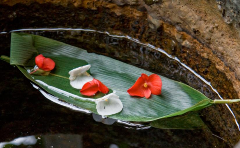 癒し映画「舟を編む」あらすじネタバレ考察・仕事に真面目になれる映画